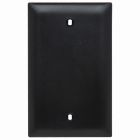 Blank Plate Black Nylon Blank, Box Mounted